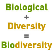 Biological + Diversity = BIOdiversity
