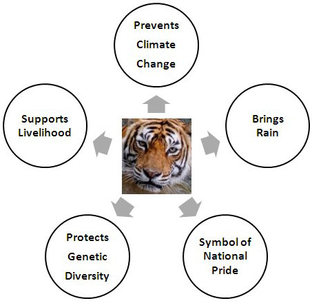 Indochinese Tiger Food Chain